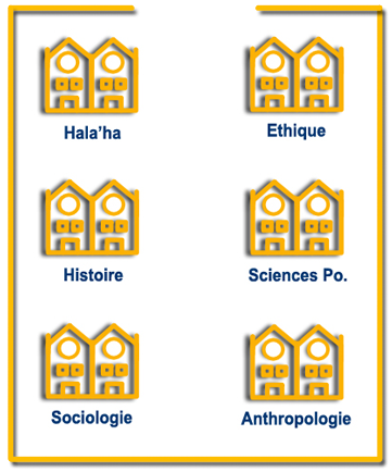 sciences-sociales-jaunes