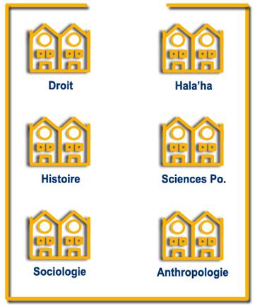 sciences-sociales-jaunes